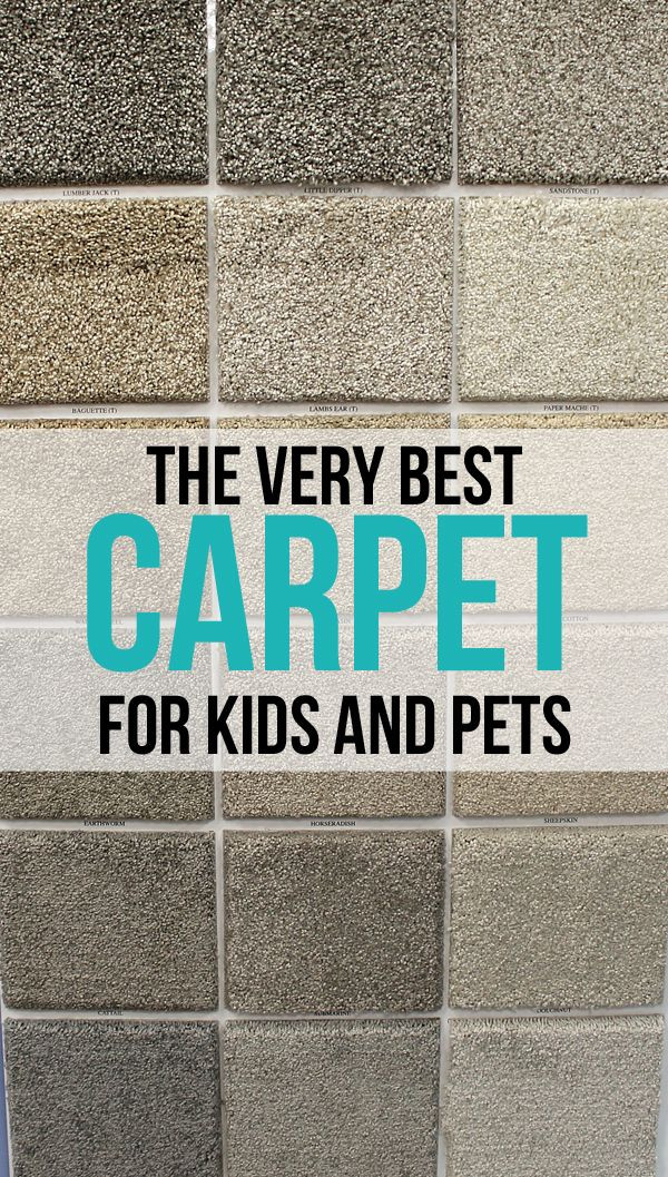 Best Carpet For Kids Room  The Craft Patch The Very Best Carpet for Kids and Pets