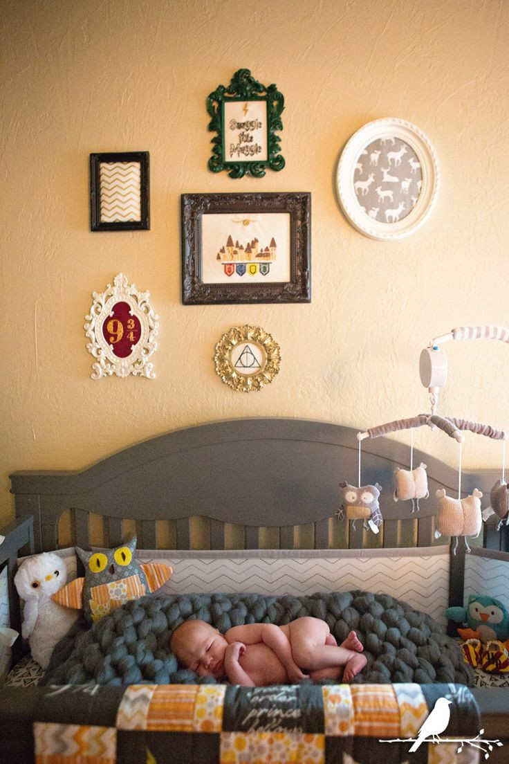 Harry Potter Baby Room Decor  Girl Themes Ideas Decals Boy Neutral Organization Colors