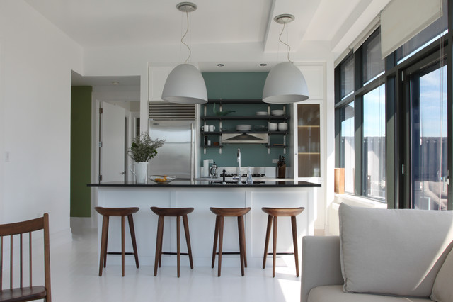 Kitchen Remodeling Brooklyn Ny  Brooklyn penthouse Contemporary Kitchen New York