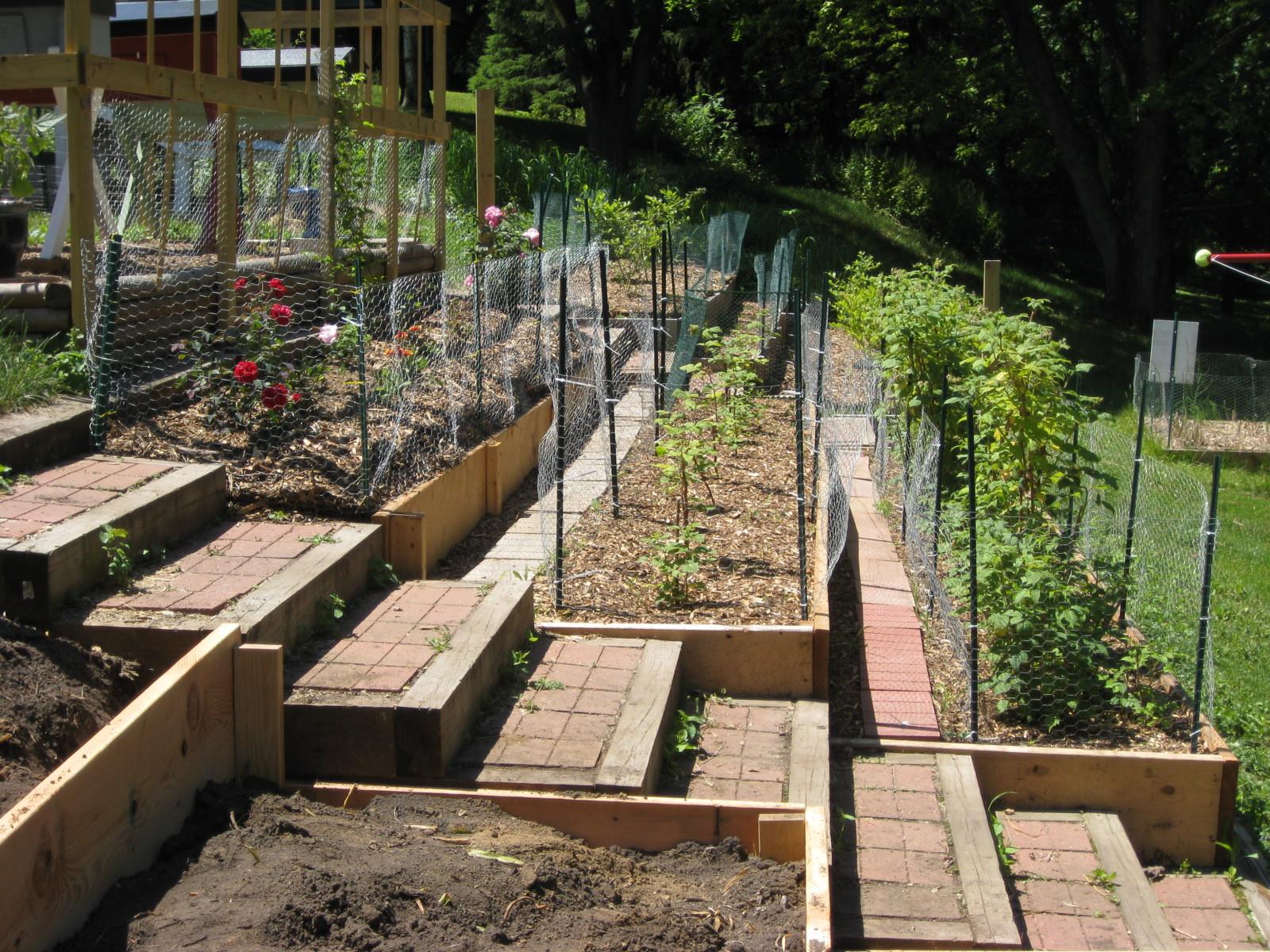 Outdoor Landscape Hill  Ve able Garden Design A Hill Izvipi Part 9