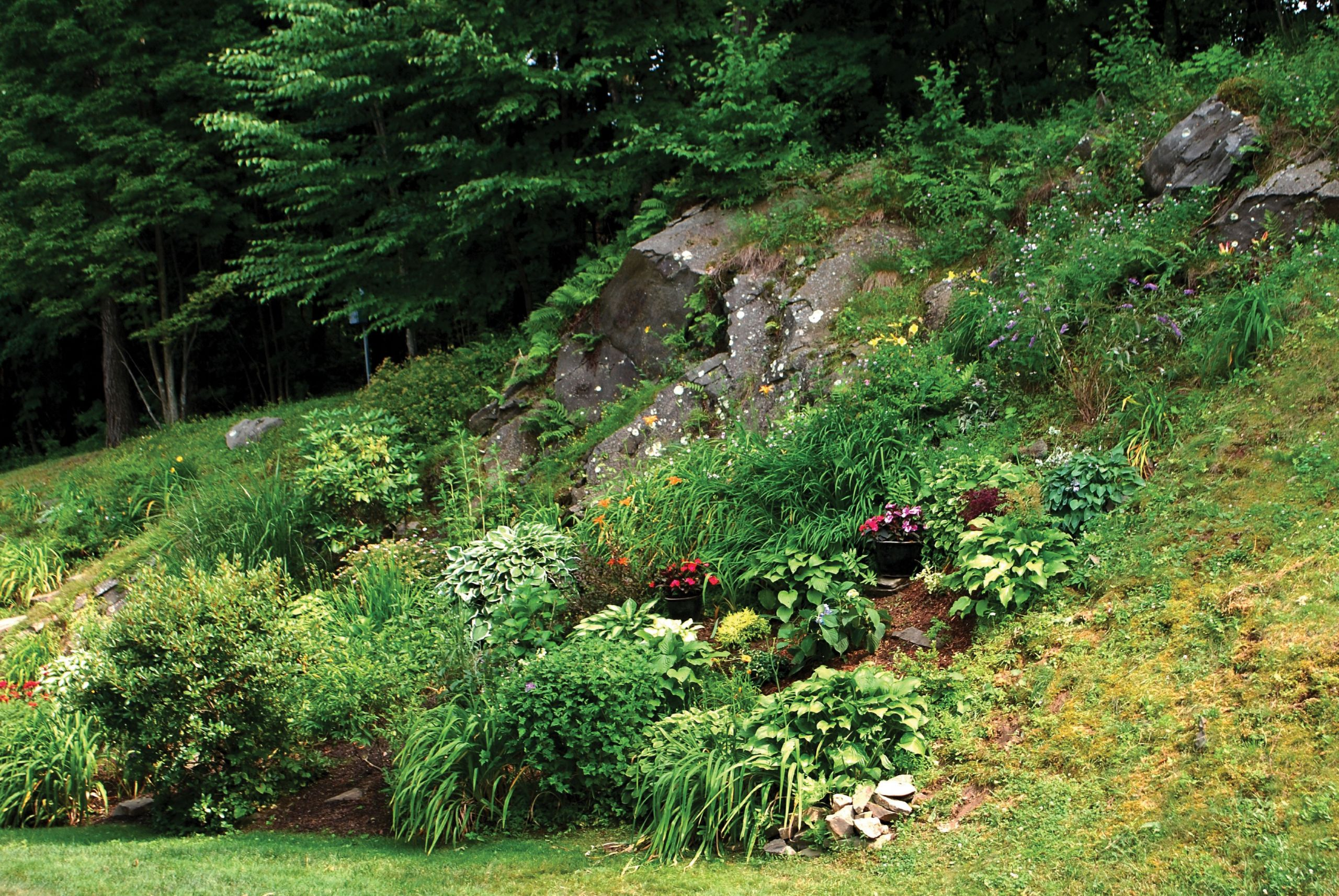 Outdoor Landscape Hill  Lessons from The Hills Gardening on Rocky and Steep