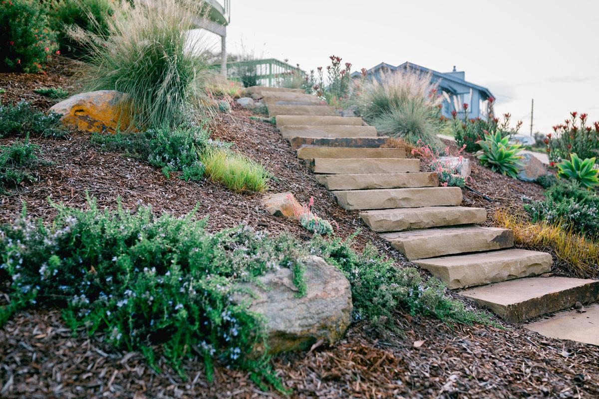 Outdoor Landscape Hill  Coastal Hillside Garden