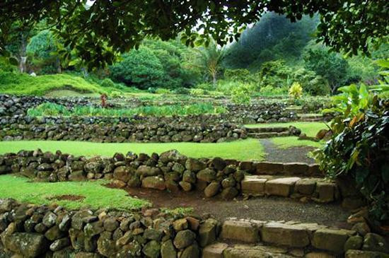 Outdoor Landscape Hill  25 Beautiful Hill Landscaping Ideas and Terracing Inspirations