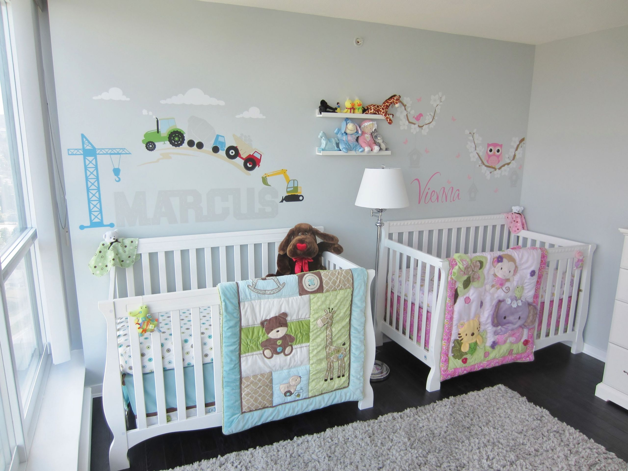 Twins Baby Room Decorating Ideas  Twins Nursery boy & girl